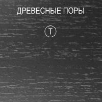 T - древесные поры